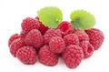 樹莓提取物